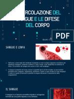 Scienze Il Sistema Immunitario