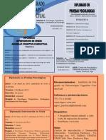 DIPLOMADO Pachuca pdf 2011