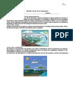 taller ciclos biogeoquimicos