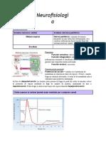Neurofisiologia (1)