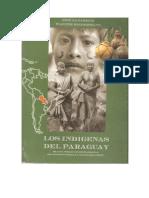 Indigenas Del Py