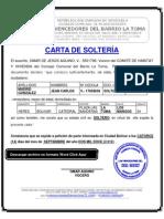 CONSEJO COMUNAL FORMATO MODELO EJEMPLO CARTA DE  SOLTERÍA