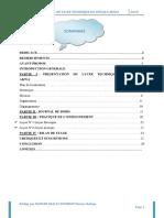rapport de stage ANDIOLO