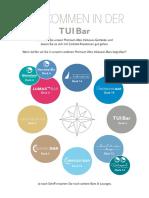 tuibar_web