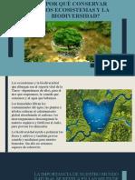 Conservacion Ambiental I