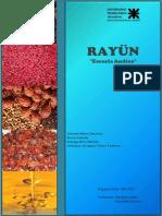 Rayün (Esencia Andina) Planta Procesadora de Rosa Mosqueta -