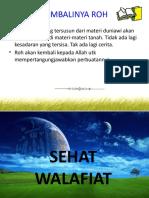 KEMBALINYA ROH menurut ISLAM