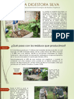 Presentación Paca Digestora Silva