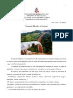 TRANSPORTE HIDRÁULICO-2021