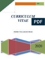 Curriculum Vitae Pedro 2020
