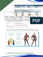 Miss Milagros_ciencia-el Sistema Muscular (1)