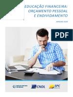 Analise Pesquisa Educacao Financeira 2019 2