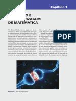 O Cérebro e a Apredizagem de Matemática