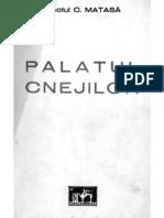 Palatul_Cnejilor