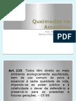 Queimadas na Amazônia - APRESENTAÇÃO CESUPI