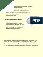 7-Architectures cognitives modulaires et duales  la quête de la plausibilité biologique - v finale - pour pdf