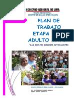 Plan Adulto Mayor Huaral