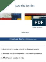 Aula 3 slides pdf Tânia Estrutura das Sessões