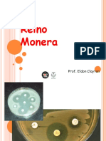 reinomonera-120306054814-phpapp01