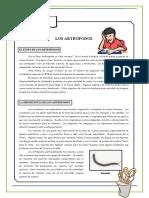 Ficha Artrópodos