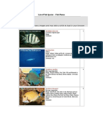 List of Fish Species