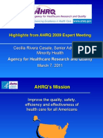 Highlights from AHRQ 2009 Expert Meeting, Cecilia Rivera Casale
