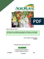 AGRORURAL PERFIL DE NEGOCIO FLORES-FINAL
