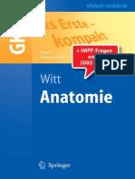 Anatomie- Witt