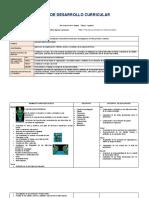 1ro_Educación_Física_PDC_2020