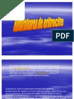 fiziologie-numaratoarea eritrocitelor