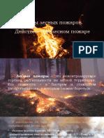 Виды лесных пожаров