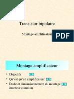 amplification (1)