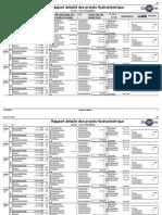 Annexe 5 - Rapport détaillé hydro interconnecté