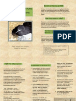 HCP brochure 20Nov2008