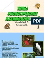 tipy-ekologiceski-vzaimodeystviy-sli