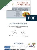 6. Vitaminas hidrosolubles y liposolubles_3