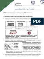 BCM_NM3 y NM4_guia tipos de celulas y tejidos