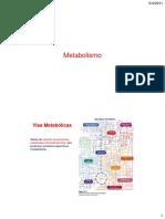 5_4_2011. Metabolismo. Vias Metabólicas. Séries de reações consecutivas catalisadas enzimaticamente, que produzem produtos específicos (metabólitos).