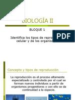1.1 Reproducción