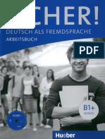 Sicher.B1+.Arbeitsbuch Compressed