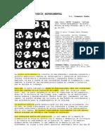 TIEA_ 005. Padín, Informe 2010. Poesía experimental