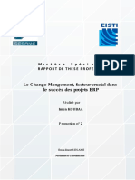 Mastere Specialise Erp Rapport de These