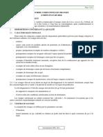 CXS_245f (1)