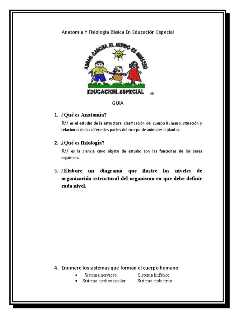 Excepcional Anatomía Y Fisiología Definido Viñeta - Anatomía de Las ...