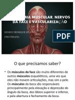 ANATOMIA MUSCULAR E NERVOSA DA FACE curso (1)