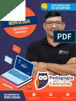 Aula_Morfologia