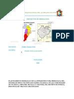 PLANTAMIENTO HIDRAULICO DE LA INFRAESTRUCTURA HIDRAULICA MENOR DEL PROYECTO DE IRRIGACION TOMEPAMPA
