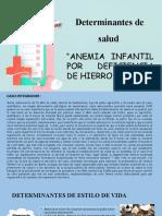 DETERMINANTES CASO DE ANEMIA