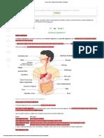 Resumo_sobre_fisiologia_Sistema_digestorio_-_Planejativo