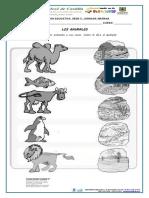 GUIA DE CIENCIAS-EL HABITAD DE LOS ANIMALES